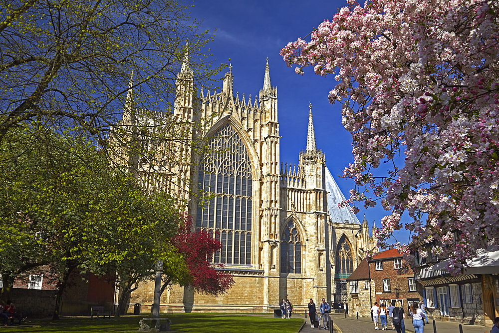 The east front of York Minster seen from St William's College, York, North Yorkshire, England, United Kingdom, Europe.