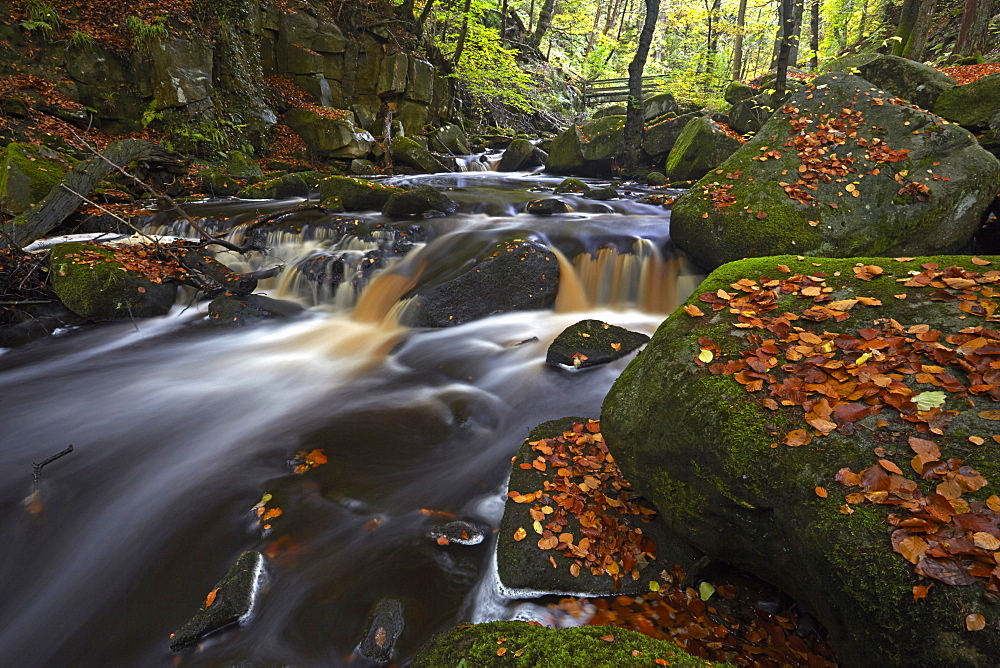 The Burbage Brook flowing through Padley Gorge, Peak District National Park, Derbyshire, England, United Kingdom, Europe