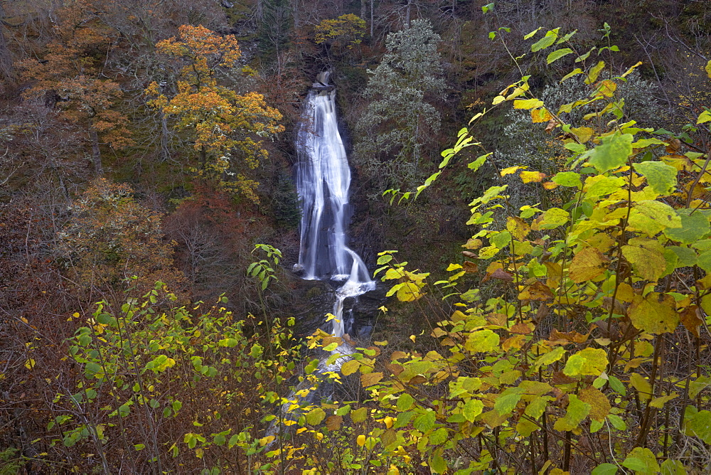 The Falls of Acharn near Aberfeldy in autumn, Perthshire, Scotland, United Kingdom, Europe