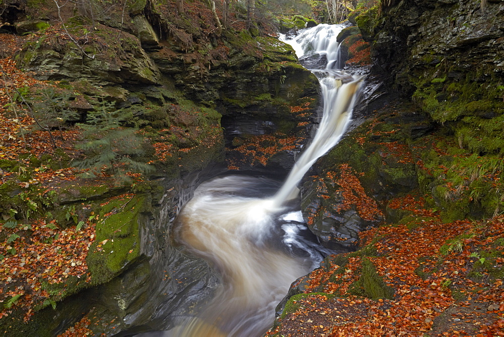 The upper Falls of Acharn near Aberfeldy in late autumn, Perthshire, Scotland, United Kingdom, Europe
