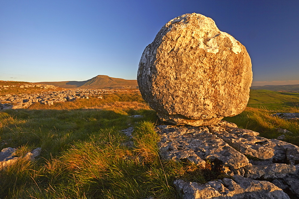 Ingleborough seen from a limestone boulder on Twistleton Scar, Yorkshire Dales National Park, North Yorkshire, England, United Kingdom, Europe