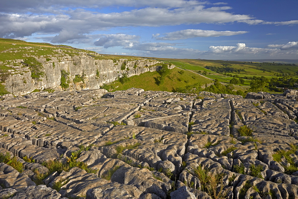 The limestone pavement on the top of Malham Cove, North Yorkshire, England, United Kingdom, Europe - 1298-87
