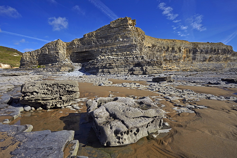 The exposed eroded cliffs of the Glamorgan Heritage Coast, Monknash, South Wales, United Kingdom, Europe
