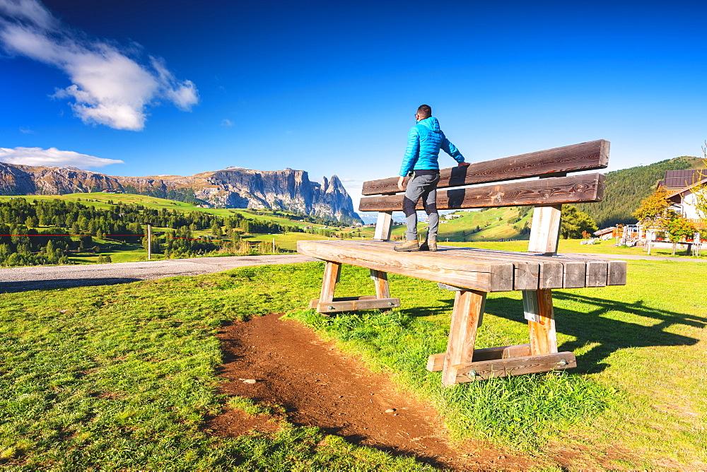 The characteristic Alpe di Siusi bench in Bolzano Province, Trentino-Alto Adige, Italy, Europe