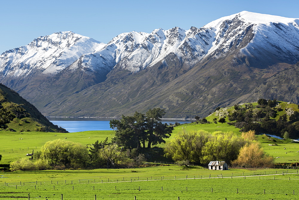 Rural scene of Lake Wanaka backed by snow capped mountains, Wanaka, Otago, South Island, New Zealand, Pacific