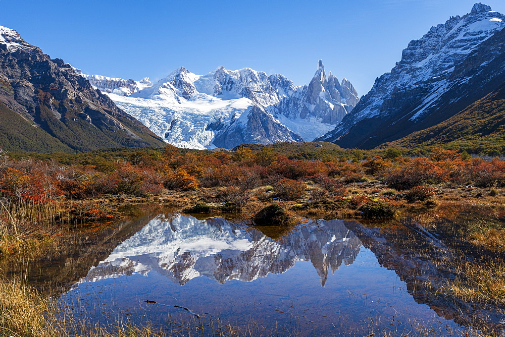 Autumn colours in Los Glaciares National Park, UNESCO World Heritage Site, with reflections of Cerro Torro, Patagonia, Argentina, South America