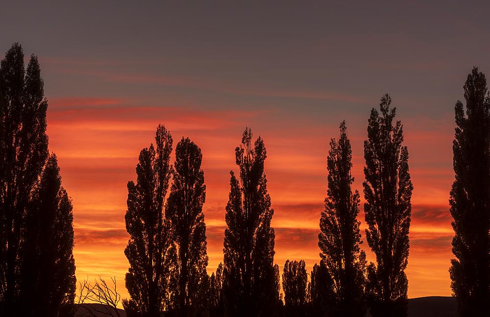 Vivid sunrise at Piedra Parada, Chubut Province, Patagonia, Argentina, South America