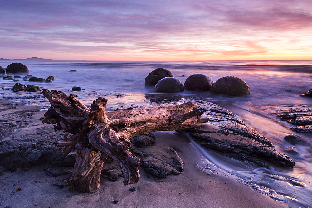 The Moeraki Boulders at sunrise, Moeraki Beach, Otago, South Island, New Zealand, Pacific