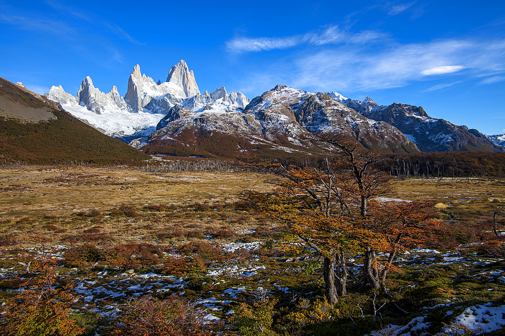 Typical autumnal Patagonian landscape with Mount Fitz Roy, El Chalten, Los Glaciares National Park, UNESCO World Heritage Site, Patagonia, Argentina, South America