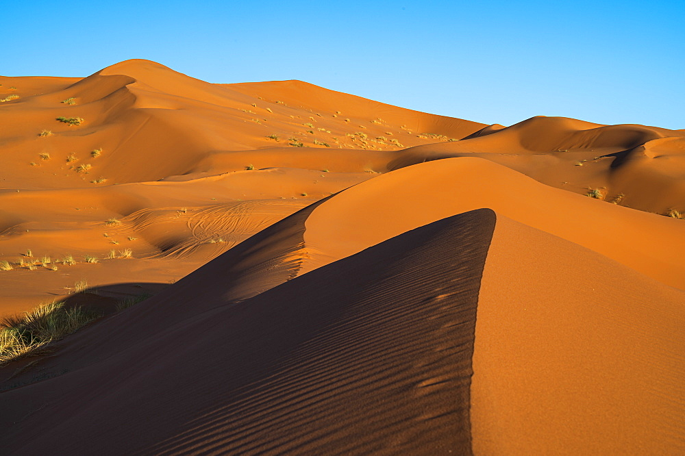 Sand dunes and blue sky, Sahara Desert, Morocco, North Africa