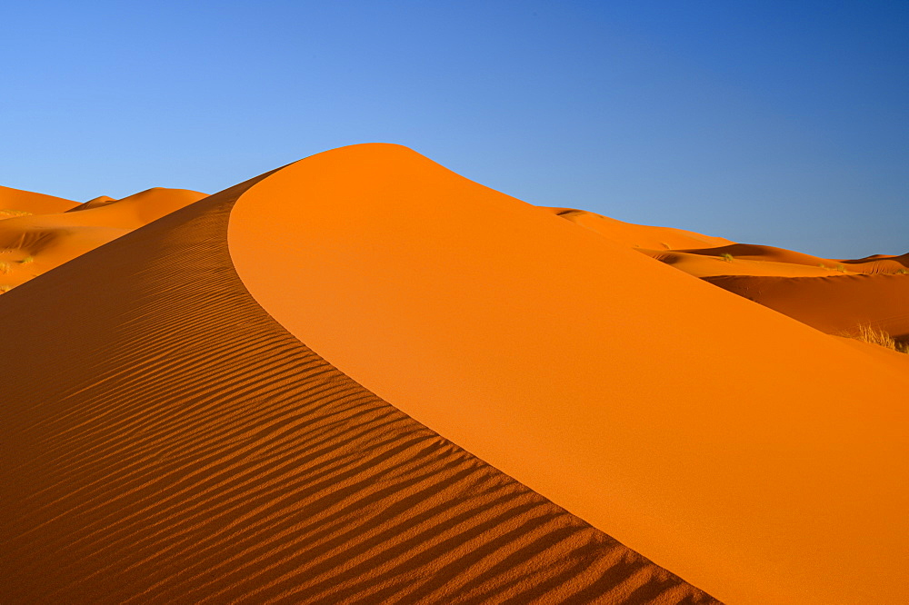 Sand dunes with blue sky, Sahara Desert, Morocco, North Africa