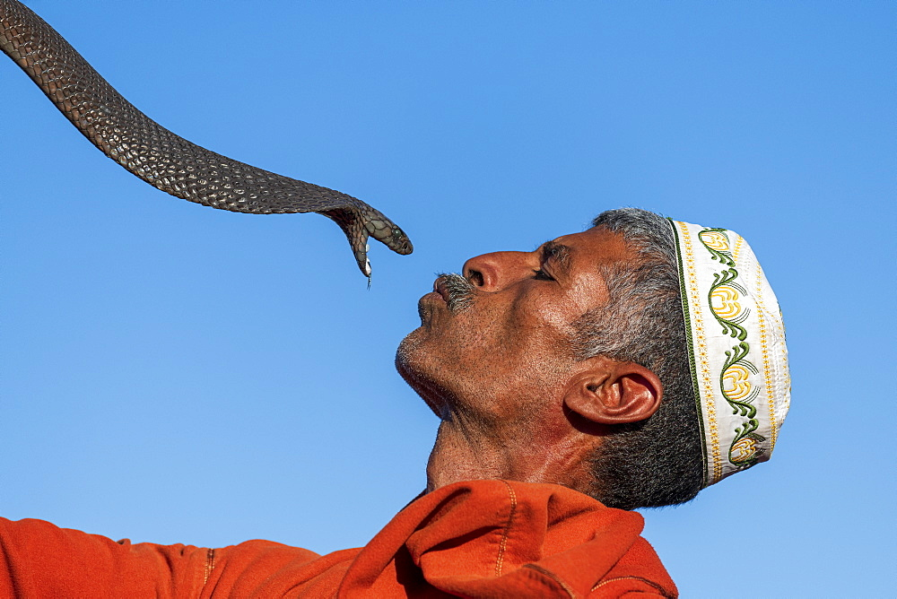 Snake charmer, Djemaa el Fna, Marrakech, Morocco, North Africa, Africa