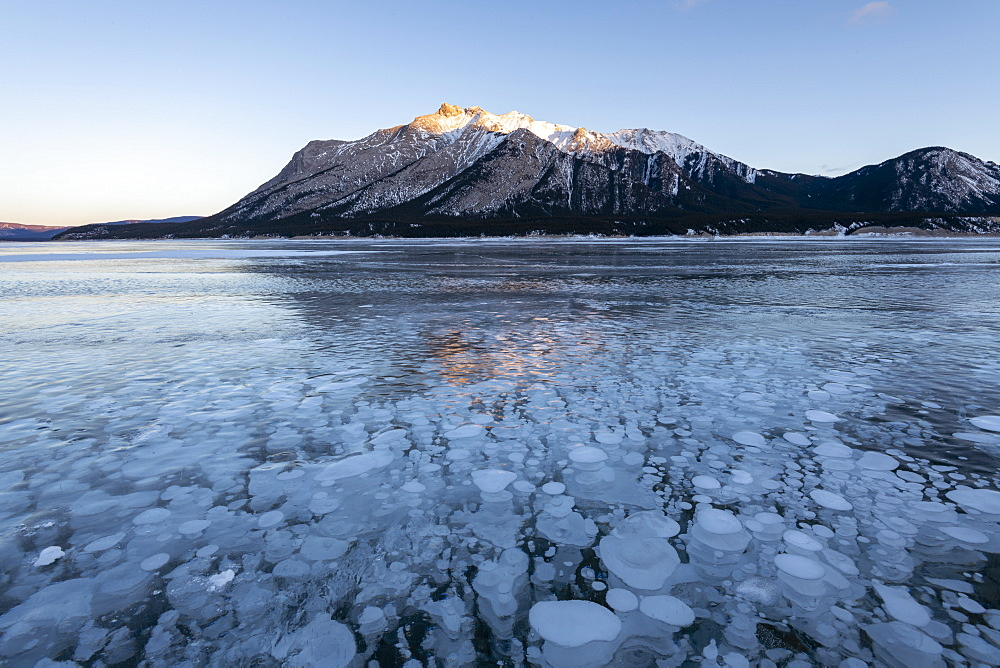Methane gas bubbles at Lake Abraham, Kootenay Plains, Alberta, Canadian Rockies, Canada, North America