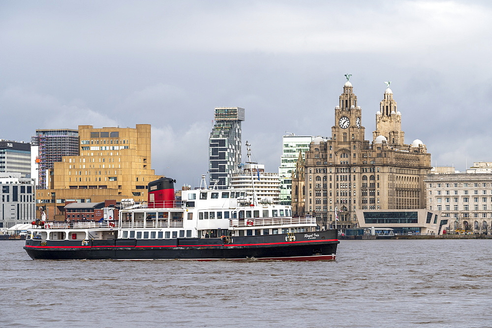 The mersey ferry Royal Iris sailing passed the Liverpool waterfront, Liverpool, Merseyside, UK