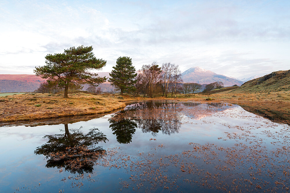 Kelly Hall Tarn with view of Coniston Old Man at sunrise, Lake District, Cumbria