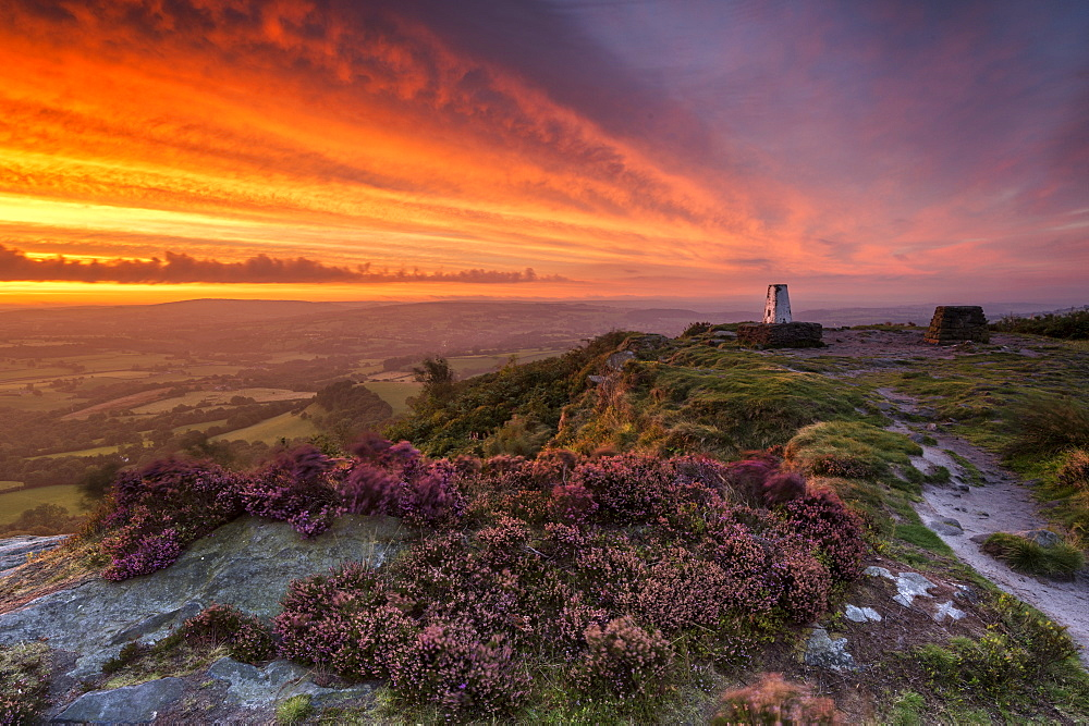 A dramatic sunrise at Cloudside with heather, Near Congleton, Cheshire. - 1306-75