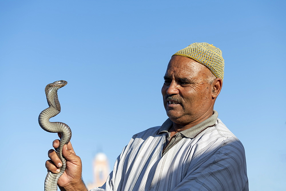 A Snake charmer, with snake, Djemaa el Fna, Marrakech, Morocco, North Africa, Africa