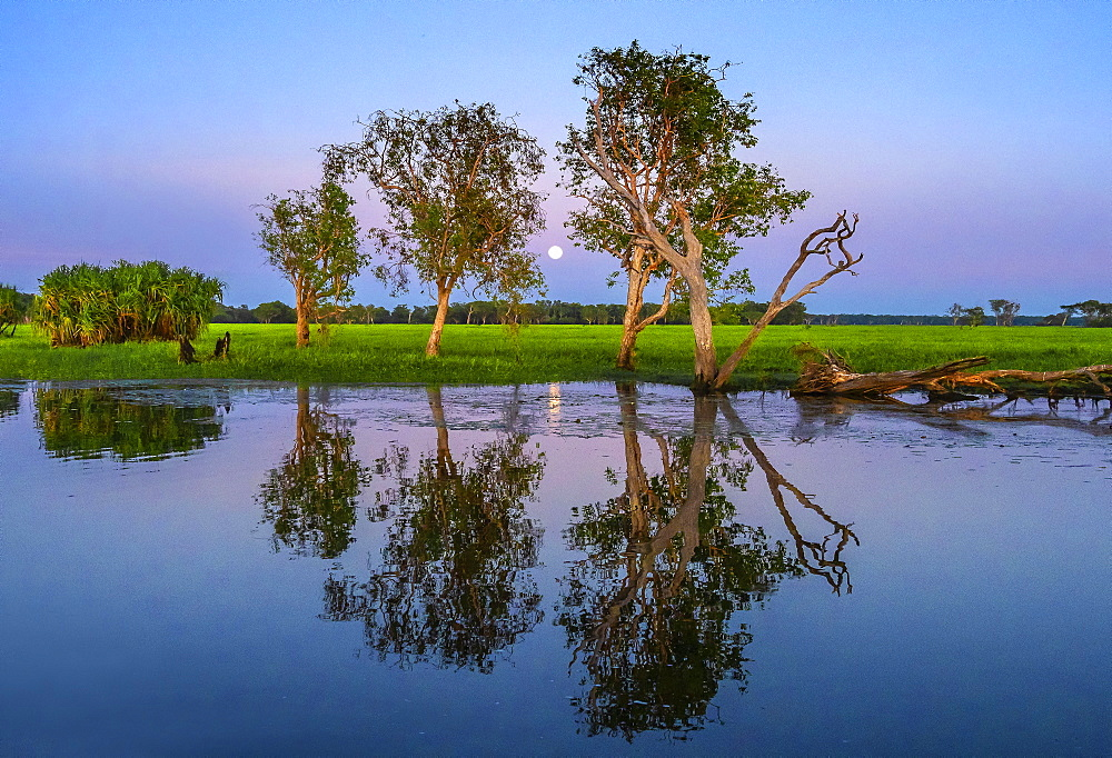 Moonrise over Yellow Water Billabong, Northern Territory, Australia, Pacific