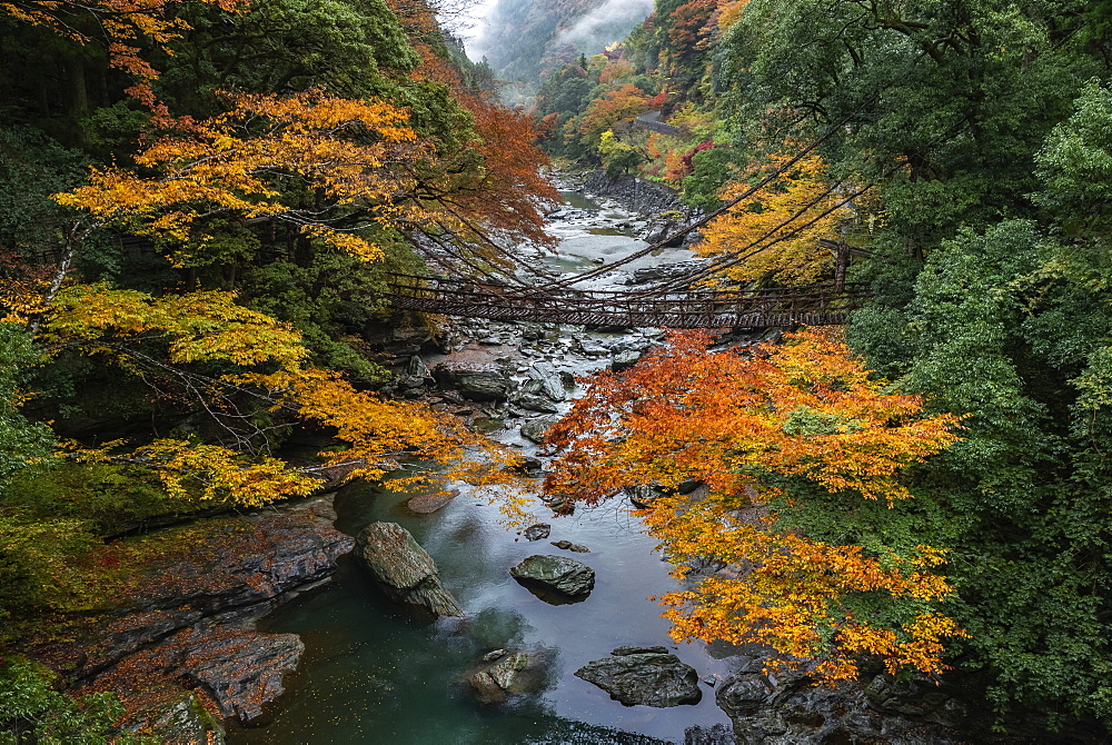 Vine Bridge in the Iya Valley, Tokushima Prefecture, Shikoku Island, Japan, Asia