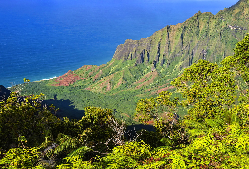 Na Pali coast from Kalalau Lookout, north west area of Kauai, Hawaii, United States of America