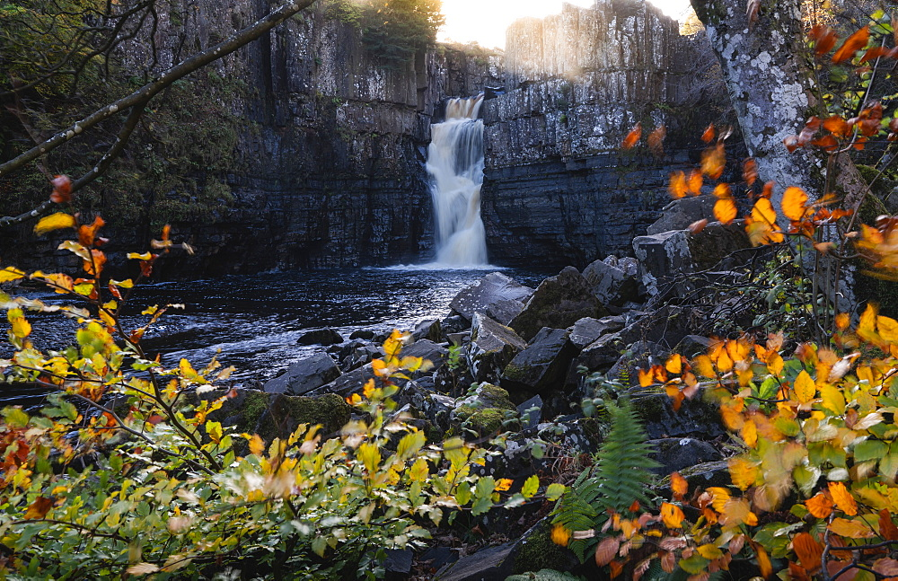 High Force and River Tees framed by autumn leaves, North Pennines AONB (Area of Outstanding Natural Beauty), Middleton-in-Teesdale, Teesdale, County Durham, England, United Kingdom, Europe - 1309-13