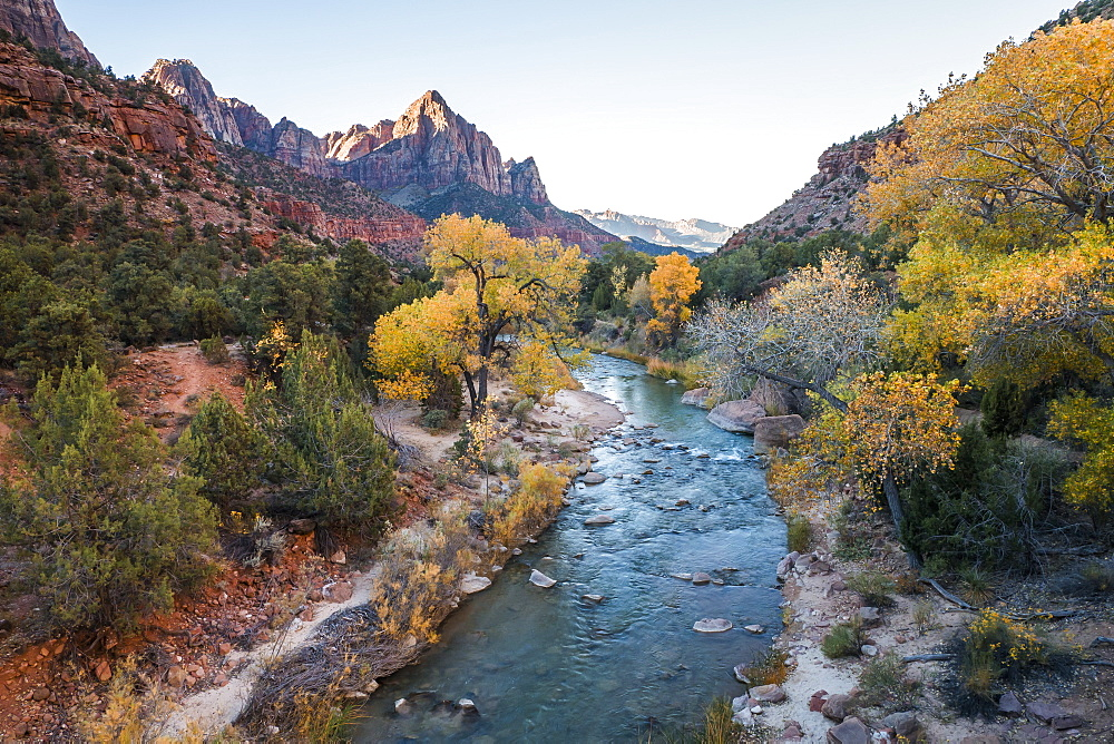 View along the Virgin River to the Watchman, autumn, Canyon Junction, Zion National Park, Utah, United States of America, North America - 1309-16