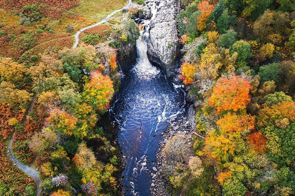 Aerial view of High Force and River Tees in autumn, North Pennines AONB (Area of Outstanding Natural Beauty), Middleton-in-Teesdale, Teesdale, County Durham, England, United Kingdom, Europe - 1309-5