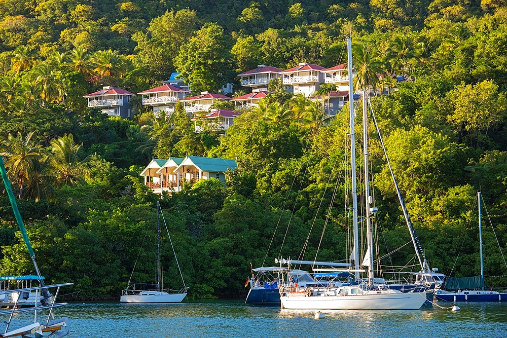 View across the tranquil harbour to wooded hillside, sunset, Marigot Bay, Castries, St. Lucia, Windward Islands, Lesser Antilles, West Indies, Caribbean, Central America