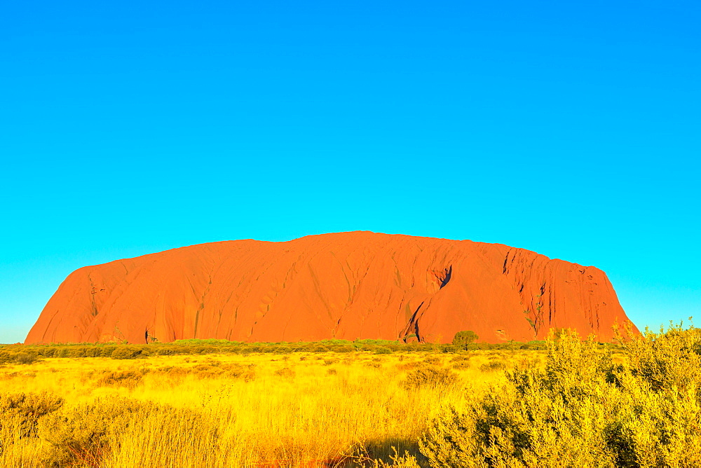 Uluru or Ayers Rock in dry season, the huge sandstone monolith in Uluru-Kata Tjuta National Park, Australia, Northern Territory. Aboriginal land in Australian outback Red Centre. Blue sky copy space.