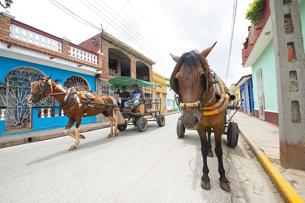 Horses pulling carts along a street in Trinidad, Cuba, West Indies, Caribbean, Central America - 1315-107