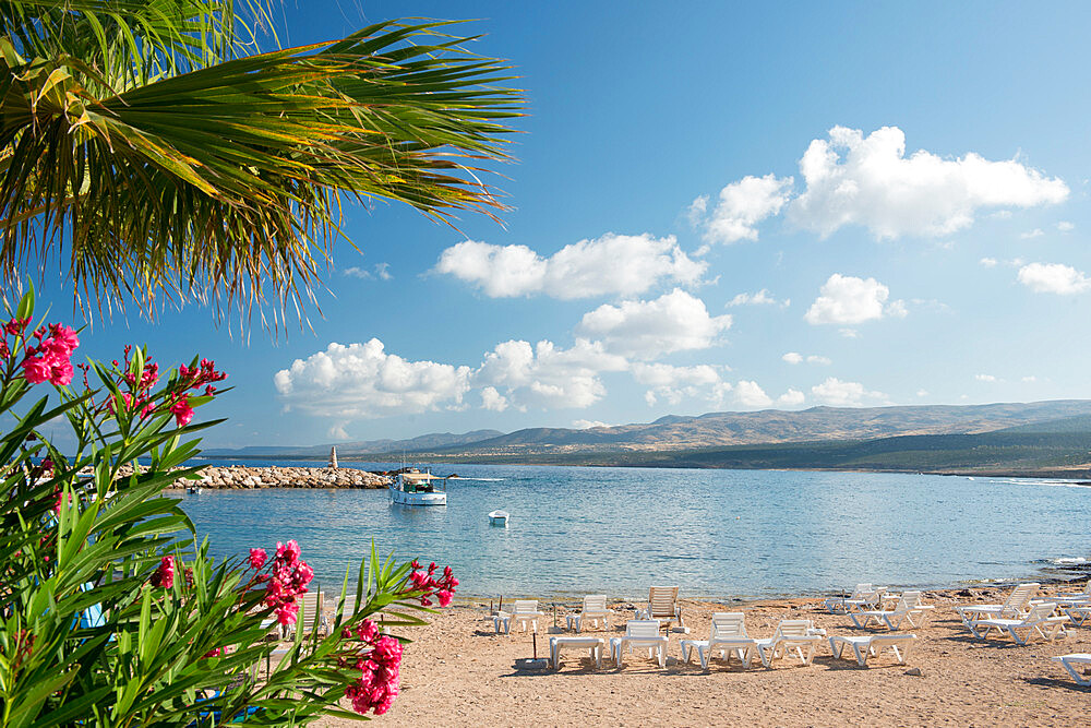St. George Beach, Paphos, Cyprus, Mediterranean, Europe - 1331-51
