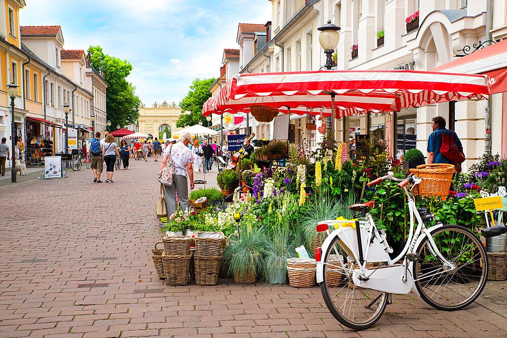 Flower stall on street by Brandenburg Gate, Potsdam, Germany - 1341-101