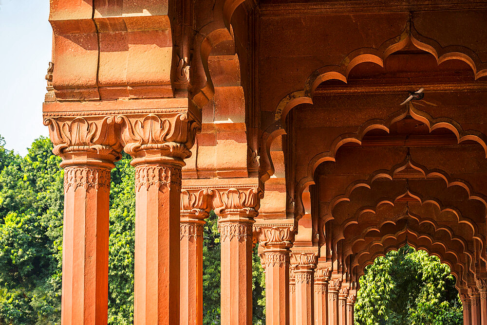 Diwan-i-Aam audience hall, Red Fort, UNESCO World Heritage Site, Delhi, India, Asia - 1341-32