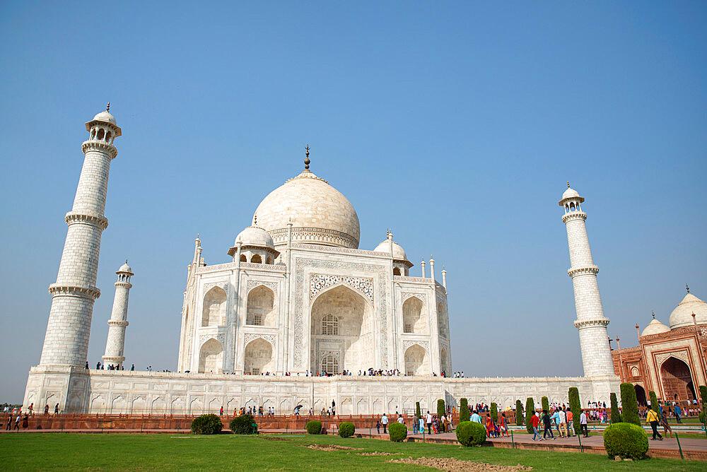Taj Mahal, UNESCO World Heritage Site, Agra, Uttar Pradesh, India, Asia - 1341-50