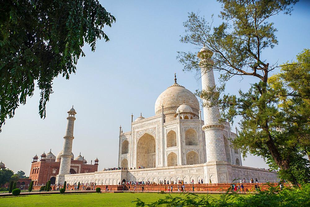 Taj Mahal, UNESCO World Heritage Site, Agra, Uttar Pradesh, India, Asia - 1341-64