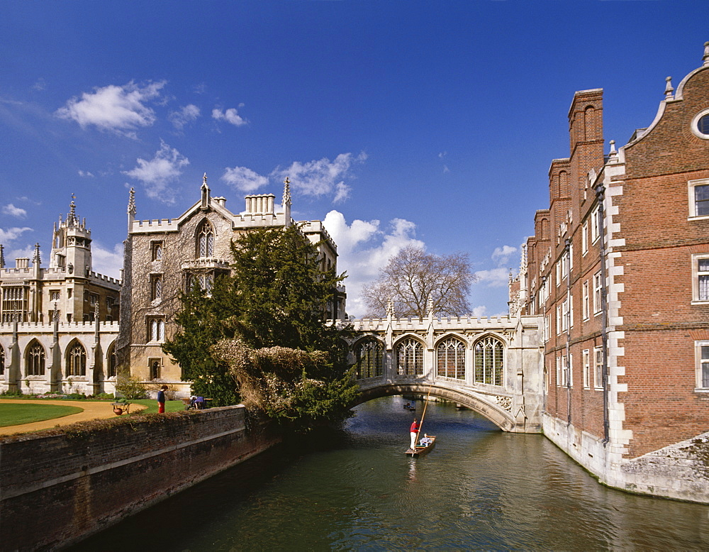 Punting under the Bridge of Sighs on the River Cam at St. John's College, Cambridge, Cambridgeshire, England, United Kingdom, Europe - 16-3202