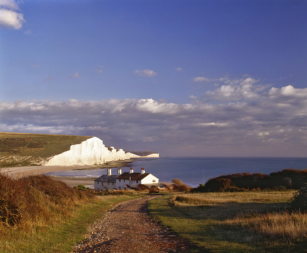 White chalk cliffs of the Seven Sisters, seen from Seaford Head, Sussex, England, United Kingdom, Europe - 16-3226