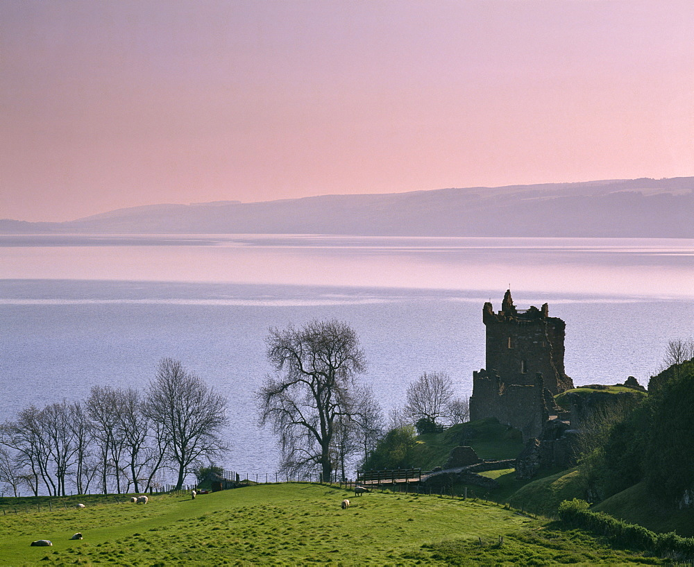Urquhart Castle, built in the 14th century, destroyed at the end of the 17th century, Strone Point on the north-western shore of Loch Ness, Inverness-shire, Highlands, Scotland, United Kingdom, Europe - 16-3255