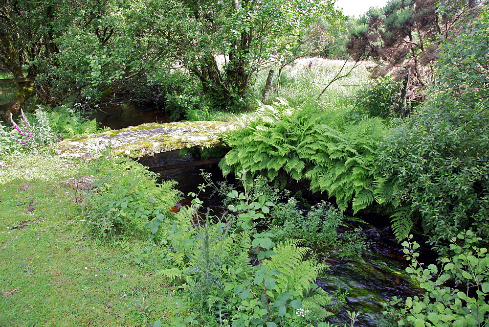 Small clapper bridge over a stream near Rowden, Dartmoor, Devon, England, United Kingdom, Europe