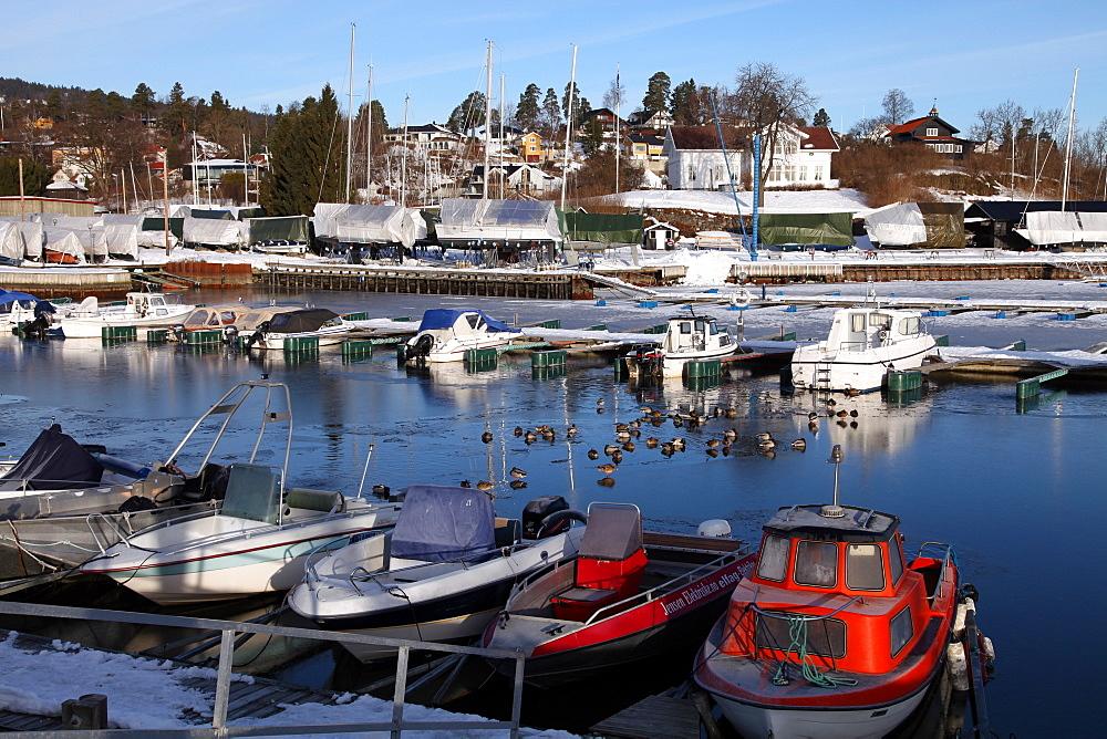 Marina in winter, Asker, Oslofjord, Norway, Scandinavia, Europe - 166-5430