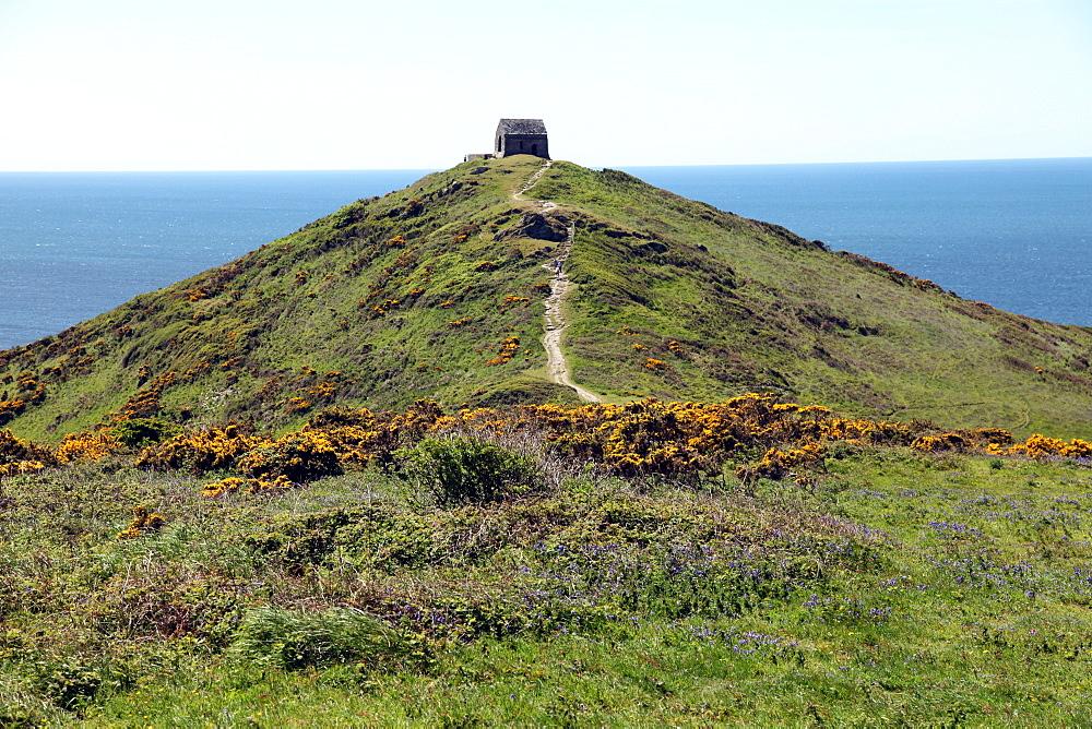 Rame Head chapel, Rame, Cornwall, England, United Kingdom, Europe - 166-5461