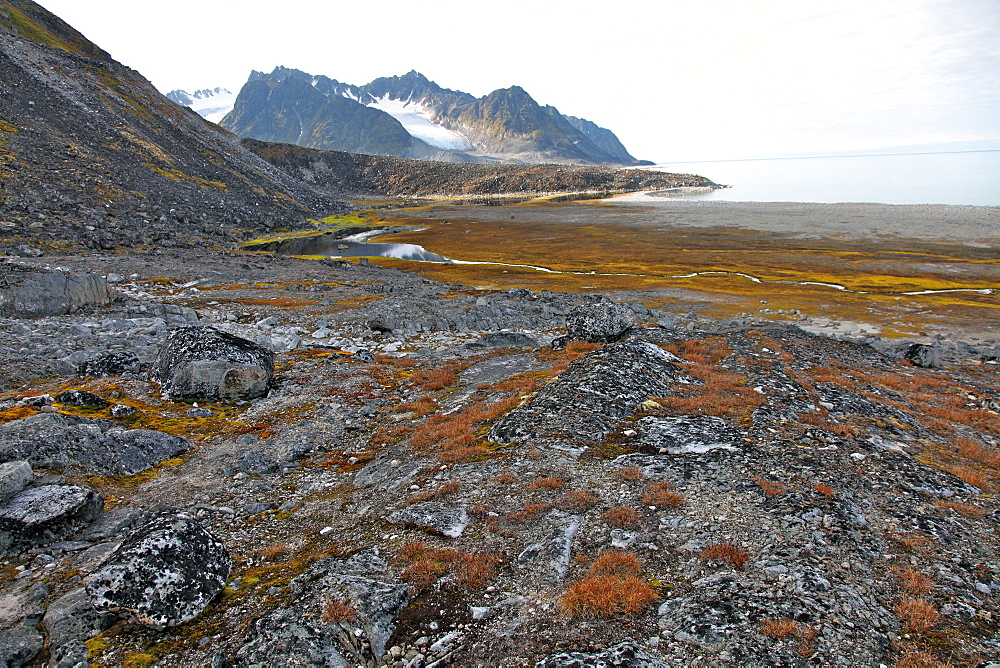 Glacial foreshore, Magdalenefjord, Svalbard Looking west - 166-5471