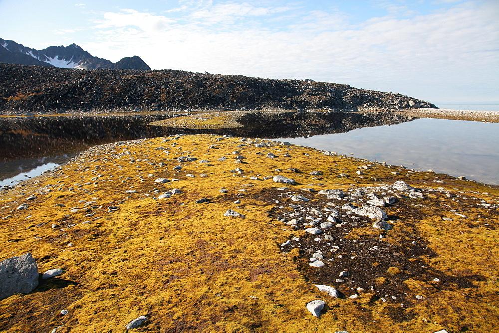 Glacial scree, foreshore, Trinity Hamn, Magdalenefjord, Svalbard - 166-5472