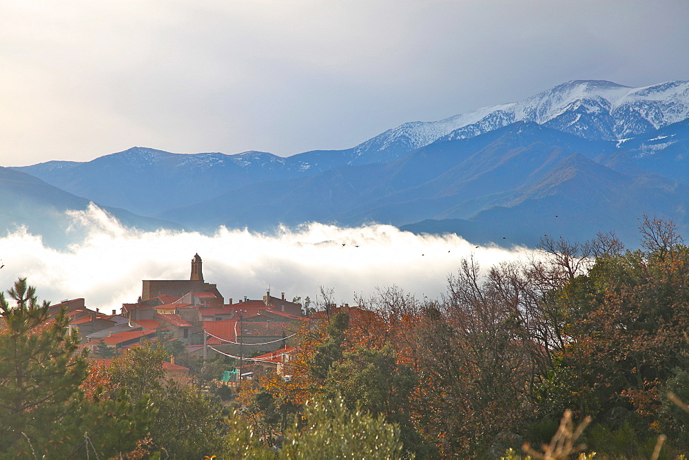 View of morning mist and Arboussols, village in the Pyrenees, Pyrenees-Orientales, Languedoc-Roussillon, France, Europe  - 166-5505