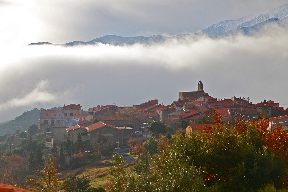 Morning mist in Arboussols, a village in the Pyrenees, Pyrenees-Orientales, Languedoc-Roussillon, France, Europe  - 166-5506