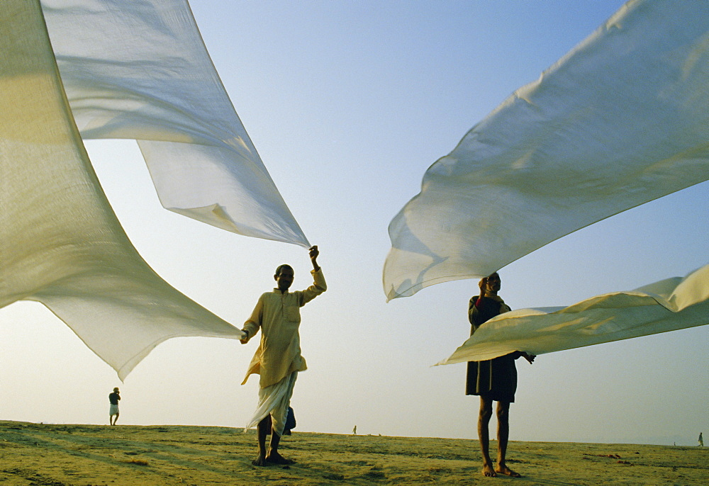 Dhotis, the national male dress, drying in the dawn breeze, India, Asia