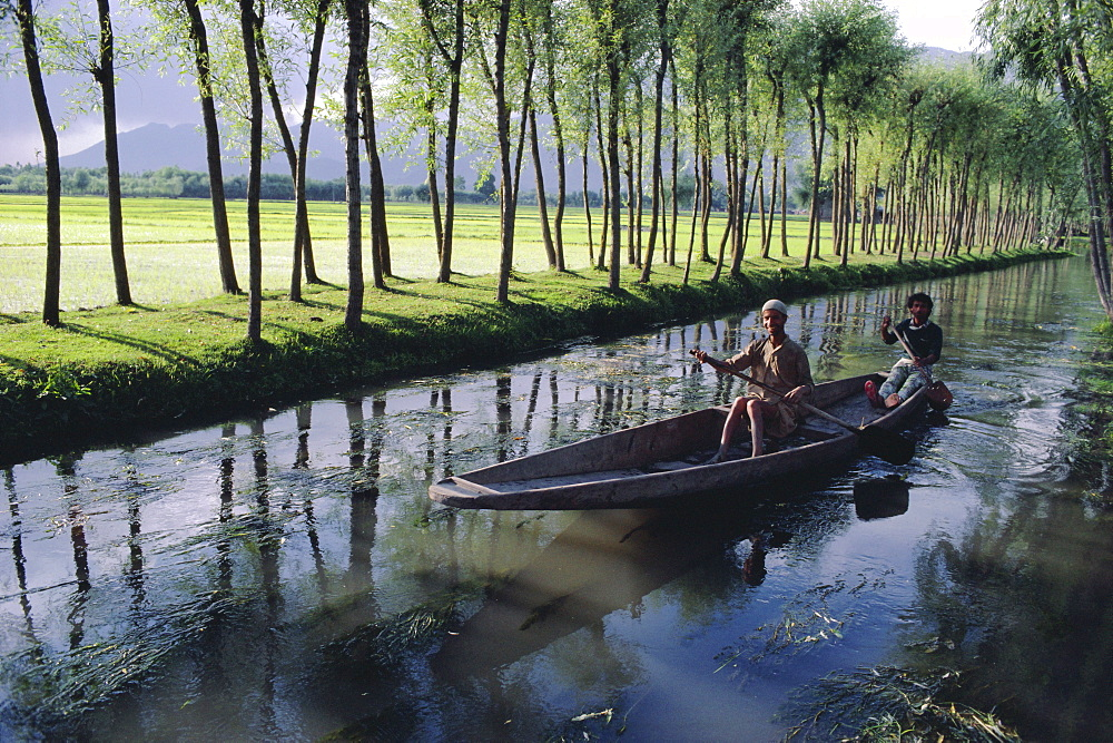 Paddy fields and waterway with local boat, Kashmir, India - 17-1705