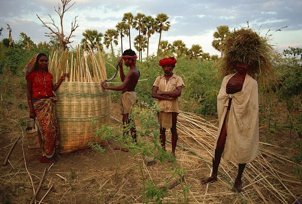 Rathwa tribal people and grain basket, Panchmahal district, Gujarat state, India, Asia