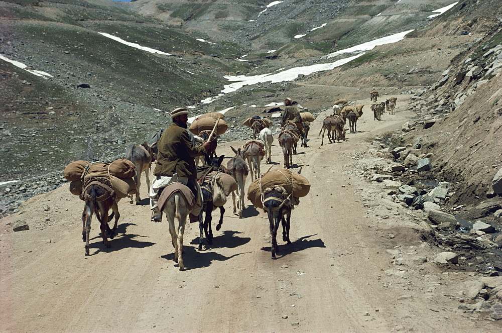 Near the top of the pass connecting Chitral, Pakistan, Asia - 188-4302