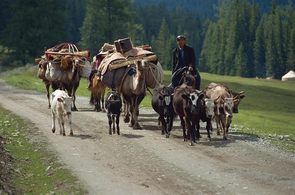 Summer migration of Kazaks, Altay Mountains, northeast Xinjiang, China, Asia - 188-6305